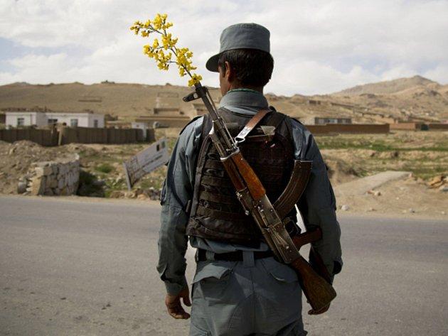 Afghánská policie si uřízla ostudu, když s velkým povykem oznámila zmaření sebevražedného útoku Talibanu, který měl být proveden novátorskou metodou – s pomocí bomby připevněné na tělo velkého ptáka.