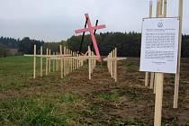 Desítka členů České strany národně sociální (ČSNS) natřela v pátek na růžovo železný kříž připomínající poválečné německé oběti u Dobronína na Jihlavsku.