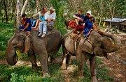 Jízda na slonech je oblíbenou turistickou atrakcí. Skrývá se za ní však mnoho utrpení.