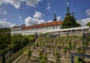 vinice pod Strahovským klášterem