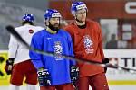 Milan Gulaš a Radek Faksa - Mistrovství světa v hokeji, trénink české reprezentace 15. května 2019 v Bratislavě. Útočníci (zleva) Milan Gulaš a Radek Faksa.