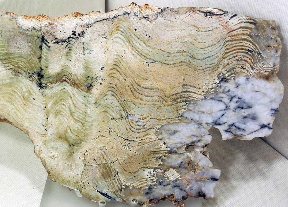 Australská Pilbara je domovem nejstarších stromatolitů na Zemi