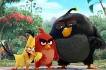 Angry Birds ve filmu.