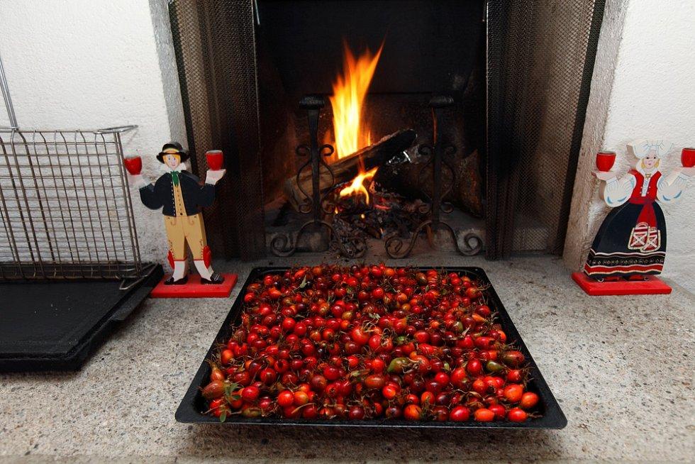 Šípky se suší při nízkých teplotách, max. do 60°C.