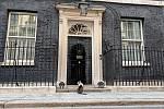 Vrchní myšilov úřadu vlády, kocour Larry, před Downing Street 10, kde oficiálně bydlí