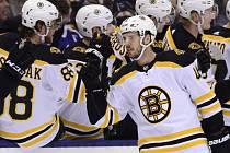 Hokejista Bostonu Bruins David Krejčí (uprostřed) přijímá gratulace od spoluhráčů ze střídačky.