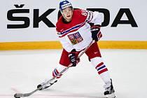 Nejmladší člen českého týmu na mistrovství světa David Pastrňák.