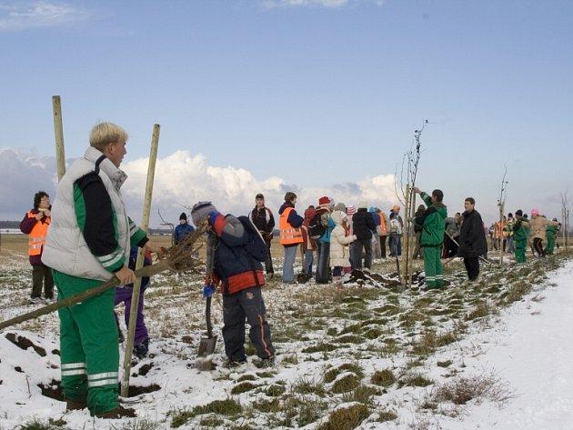 S podporou Nadace Partnerství se na podzim objevily nové stromy v Alejí národů v Přísnoticích na jižní Moravě.