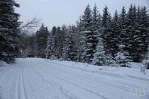 Počasí, sníh, mráz, obleva - ilustrační foto
