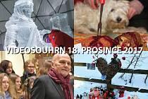 Videosouhrn Deníku – pondělí 18. prosince 2017