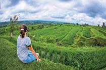 Rýžová pole Jatiluwih, Bali