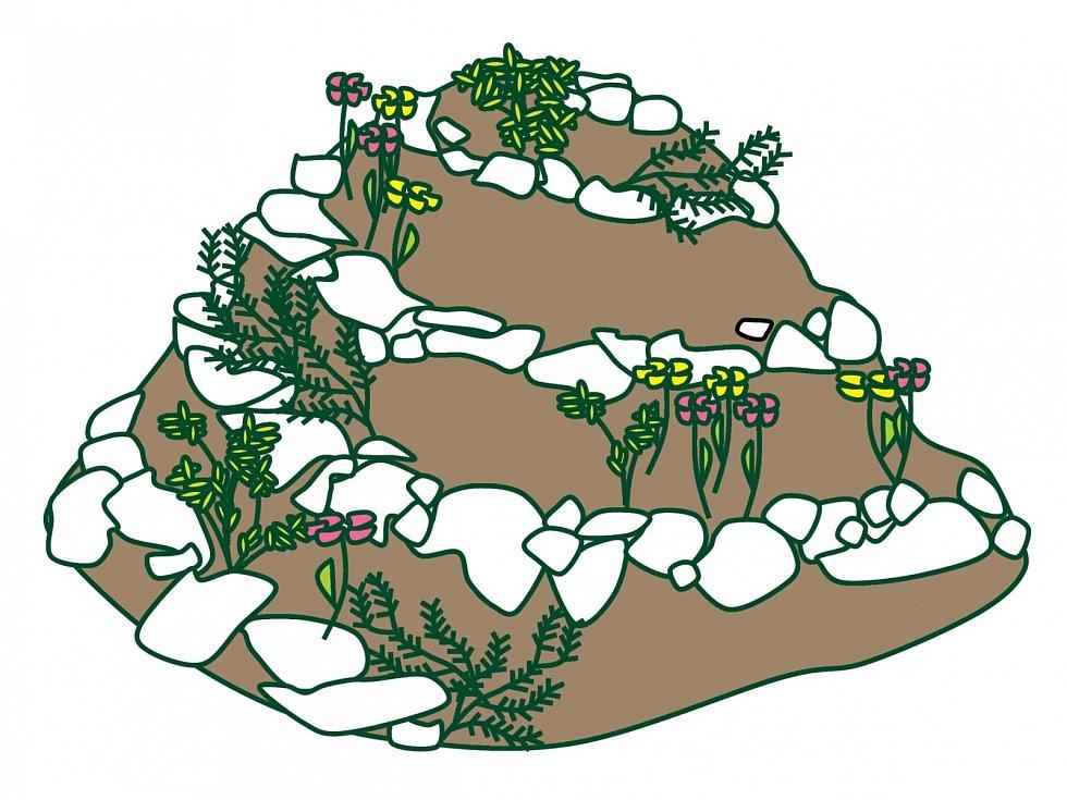 Kameny usazujeme tak, aby byly stabilní asloužily jako nášlapné. Ulehčíme si práci při péči obylinky ipři jejich sklizni.