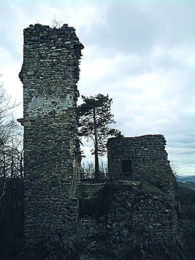 Zřícenina Zubštejn stojí na vrcholu stejnojmenného protáhlého kopce atvoří dominantu krajiny vokolí obce Pivonice.