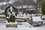 Sloni indičtí se sněhu nebojí.