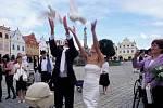 Z obřadní síně vychází právě sezdaný pár. Do ruky bere po jedné bělostné holubici a pro štěstí a mír v domácnosti novomanželů vypouštějí ptáky na svobodu. Ilustrační foto.