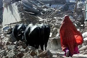 Zemětřesení zničilo v Indii více než milion domů a vyžádalo se více než 20 tisíc lidských obětí. Stovky tisíc lidí ztratily domov