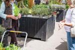 Vévodkyně Kate na akci ve Fakenhamském zahradním středisku.
