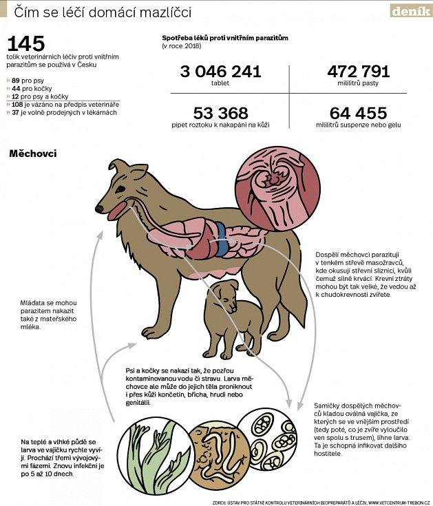Zvířecí paraziti. Infografika