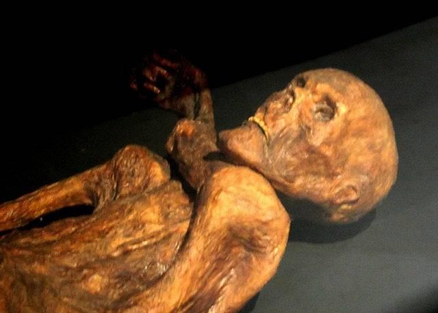Rekonstrukce Ötziho mumie v Muzeu pravěku v Quinsonu, Alpes-de-Haute-Provence