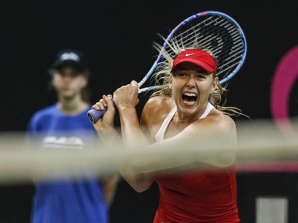 Maria Šarapovová z Ruska ve finále Fed Cupu proti Petře Kvitové.