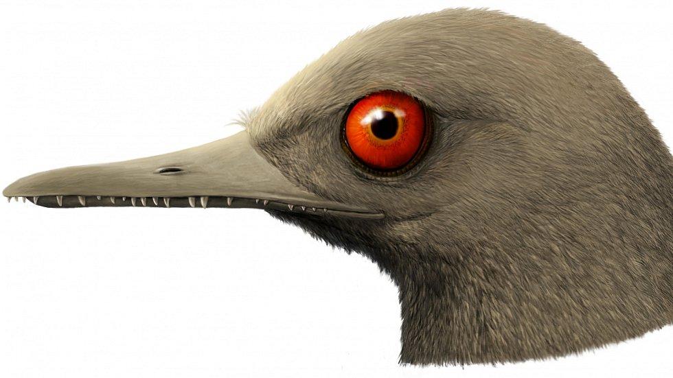 Vědecko-umělecká rekonstrukce hlavy dinosaura