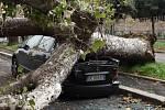 Povodně a orkán v Itálii napáchaly škody.