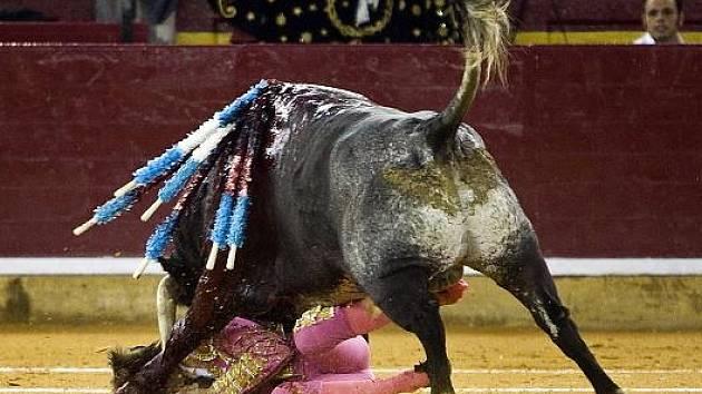 Španělský toreador Juan Jose Padilla v pátek utrpěl vážná zranění v obličeji poté, co jej při koridě nabral býk na roh za spodní čelist.