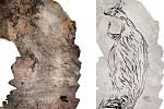 Podle vědců je nalezená klokanice nejstarším australským uměním.