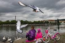 Děti sedí na pražské náplavce. Ilustrační foto