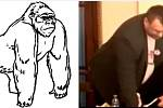 Poslanec měl podobný postoj jako gorilí samec, všimli si někteří humoristé