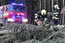Odstraňování stromů ze silnice, vítr, hasiči - ilustrační foto