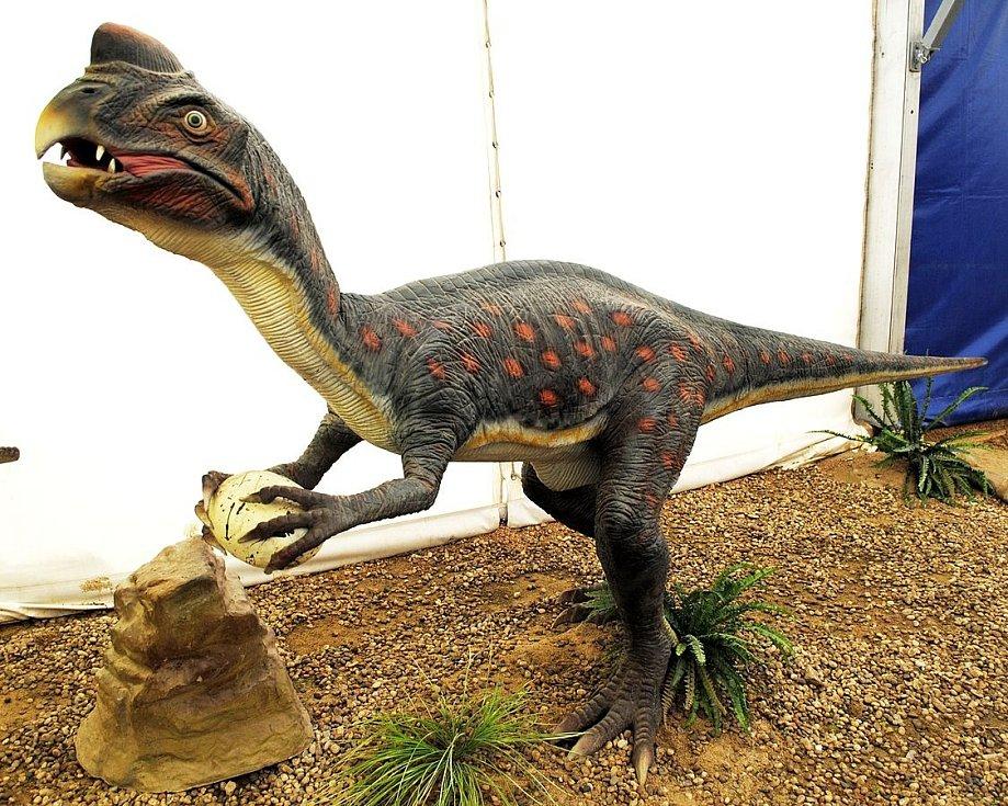 Oviraptor s vejcem
