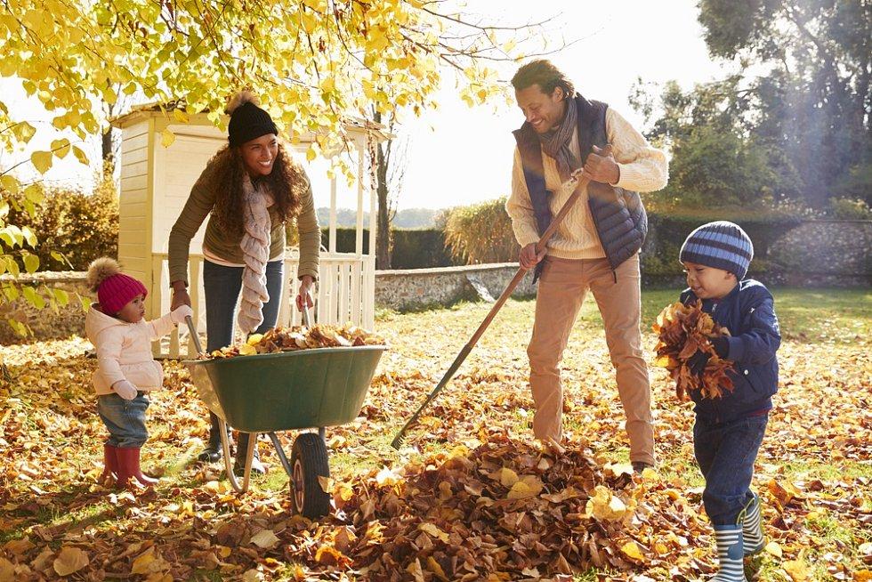 Shrabané listí najde v zahradě další využití.