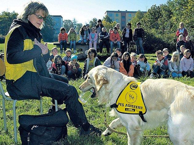 """TO JE ŠIKULA! Podat sklenici nedělá Hugovi problém, přestože se psi skla normálně bojí. Jako """"psí asistent"""" to ale musí umět překonat."""