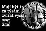 Mají být tresty za týrání zvířat vyšší?