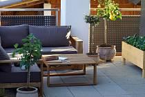 Pohled na stylové posezení na terase obklopené středomořskými rostlinami