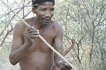 Křovák z Botswany