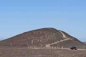 Obrazec kočky na planině Nazca.