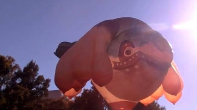 Horkovzdušný balón nazývaný Skywhale přeletěl australské hlavní město Canberra