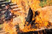 Zoologická zahrada ve Dvoře Králové nad Labem spálila 19. září na protest proti nelegálnímu obchodu se zvířaty a pytláctví 33 kilogramů nosorožčí rohoviny. Na hranici byly rohy nosorožců, které pocházejí od uhynulých zvířat, rohy odřezané chovateli a rohy