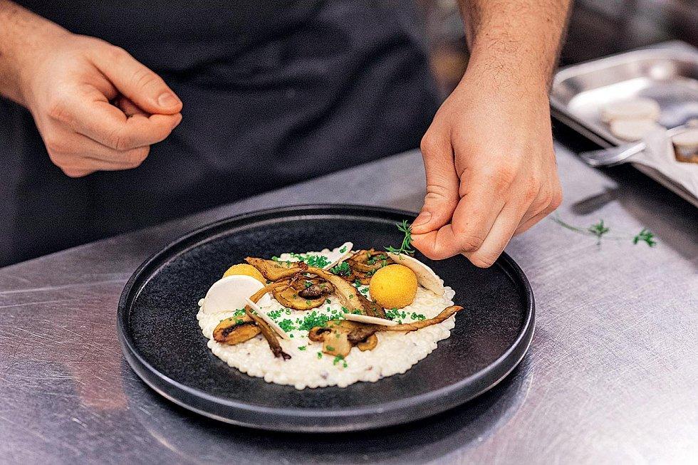 Tarhoňa s brynzou, špekem a houbami