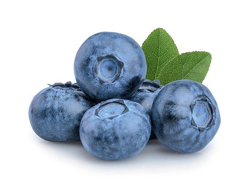 Borůvky mají vysoký obsah antioxidantů.