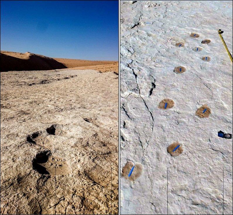 Vlevo stopa sloní stezky, vpravo velbloudí. Obě ze stejné oblasti, kterou procházel i Homo sapiens