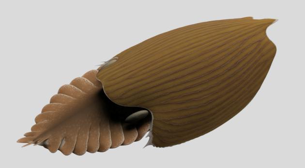 Přibližná podoba podmořského tvora Titanokorys gainesi.