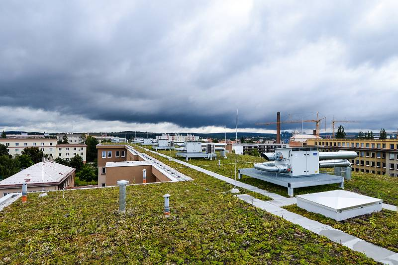 Zelené střechy v Plzni - Paluba Hamburk, 20. ZŠ a Fakultní nemocnice