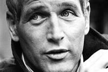 Paul Newman na archivní fotografii z let, kdy naplno propadl závodní vášni. Poprvé závodil v roce 1972 a už o sedm let později byl druhý ve 24hodinovce v Le Mans.