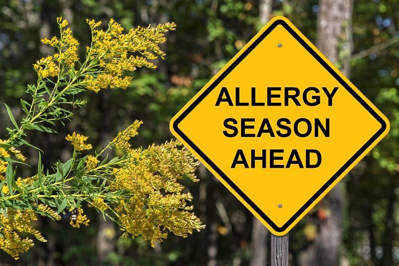 Prevence alergií, bohužel, zatím není známá.