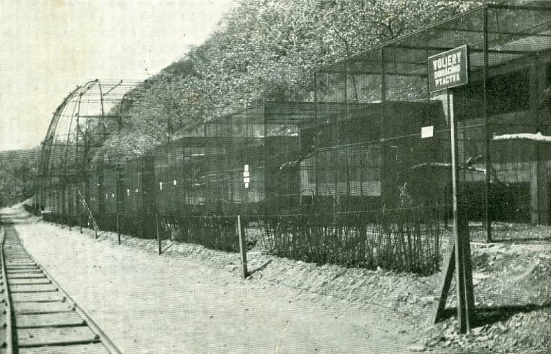 Cesta k velké voliéře, rok 1932
