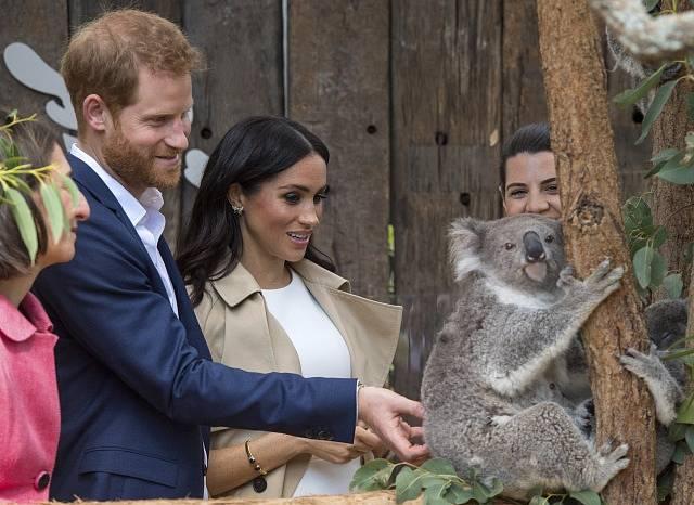 Princ Harry a vévodkyně Meghan na návštěvě v zoologické zahradě.
