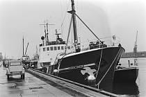 Loď Rainbow Warrior (Duhový válečník), patřící organizaci Greenpeace, kotví v amsterdamském přístavu. Snímek pochází z roku 1981. O čtyři roky později s loď stala terčem pumového atentátu a byla potopena